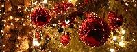 Eventi di Natale a Matelica Foto